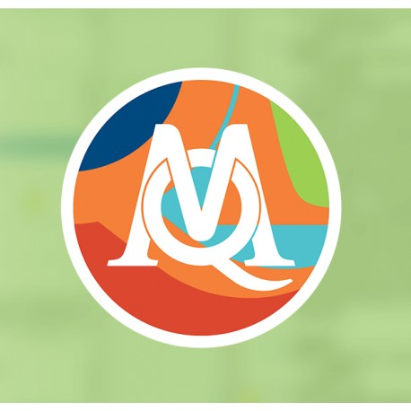 MAXQDA Analytics Pro